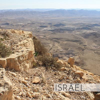 israelED1